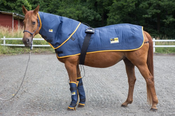 Equimag Profiset Magnetfeldtherapie Pferd