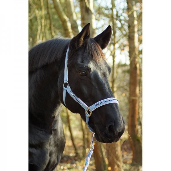 Halfterset Rosedream Shire Horse, Kaltblut Halfter