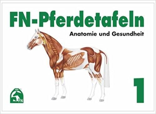 FN Pferdetafeln 1 Anatomie und Gesundheit