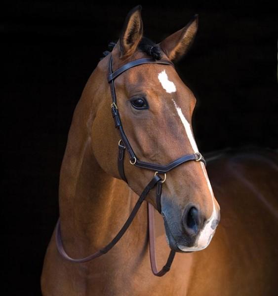 Horseware Rambo® Micklem® Multibridle